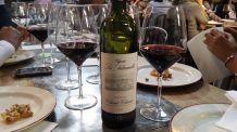 Дегустация вин в энотеке Флоренции cod.vin05