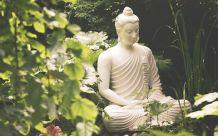 Поездка в Ботанический сад Андре Хеллера, озеро Гарда cod.exc08